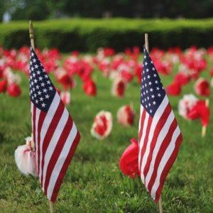 American-Flag-Memorial-Day-Red-Poppy